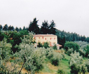 VILLA LA FORRA FROM THE OLIVE GROVE