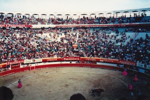 Tijuana Mexico bullfight