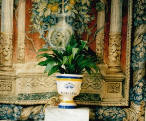 Vase at Real Alcazares