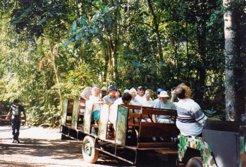 Eco tropical rainforest park near Iguazu falls
