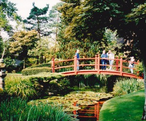 Amazing Japanese Gardens at Irish National Horse Stud, Kildare, you just don't expect to see a Japanese garden in Ireland.