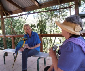 Lady with the MaCaw parrot