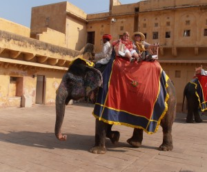 Michelle and Colleen on the fabulous elephant ride at Amber fort