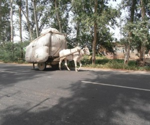 Road from Agra, loaded up